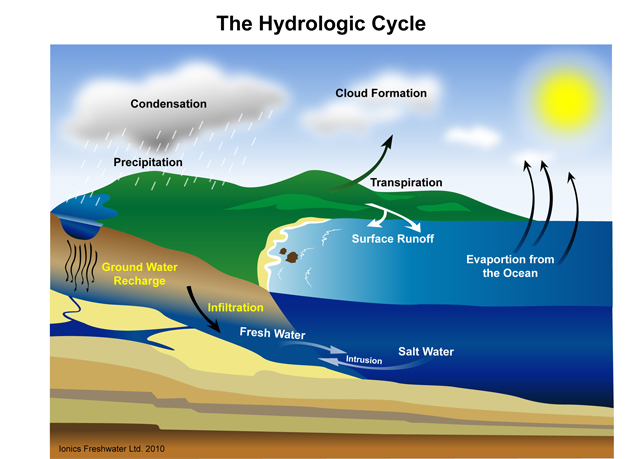 hydrosphere and the hydrologic cycle environmental sciences essay The components of the hydrosphere, as well as the cryosphere (frozen water), the atmosphere, and the biosphere, participate in the global hydrologic cycle earth's water supply has had, since earth was created, major influences on earth's climate, its landscape and mineralogy, the composition of its atmosphere, and on the origin and.